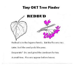 tiny tree finder