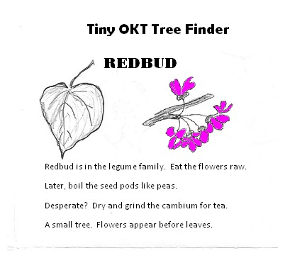 tiny tree finder