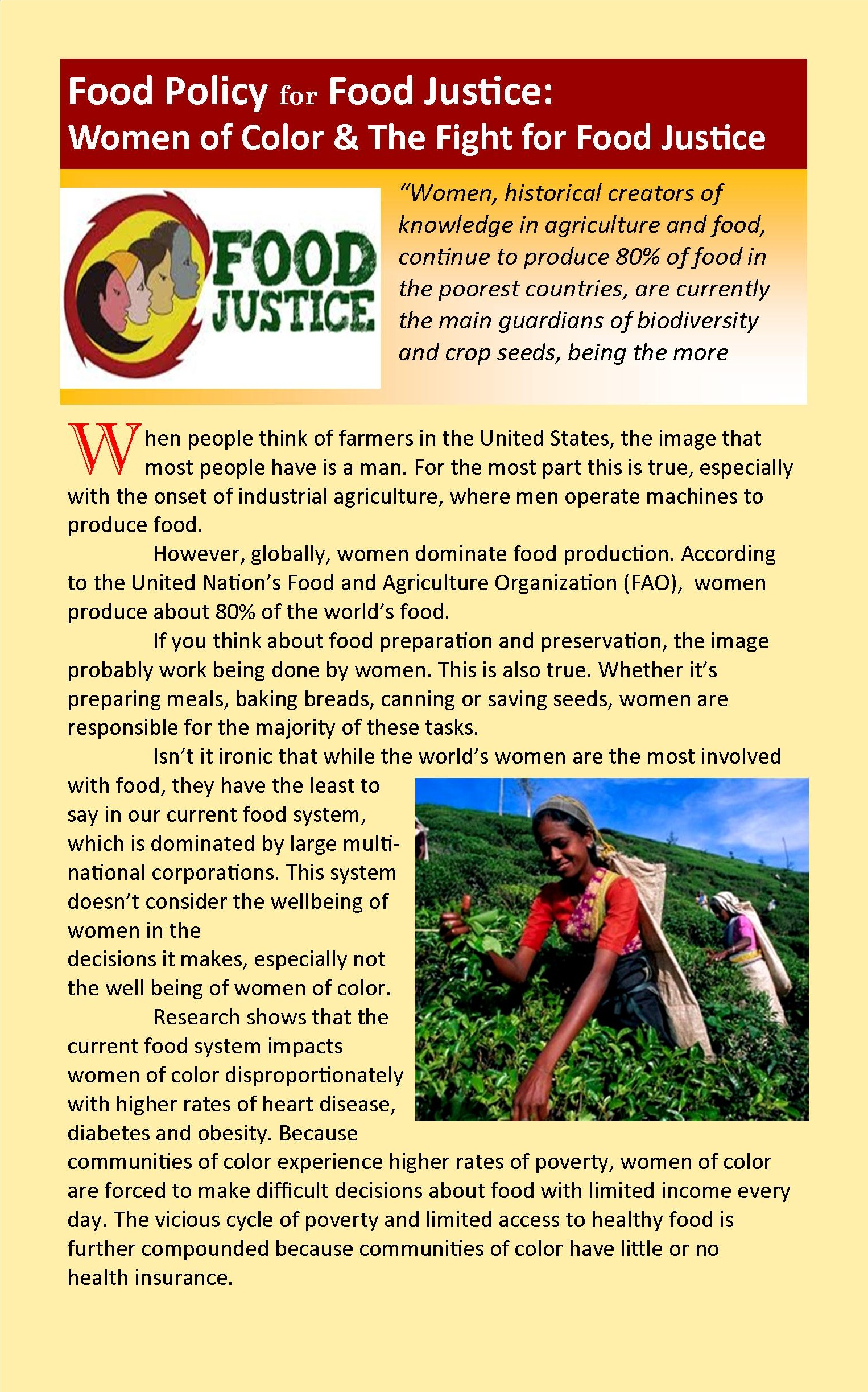 what is food justice