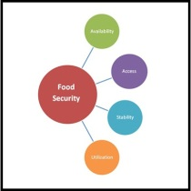 fs-food-security