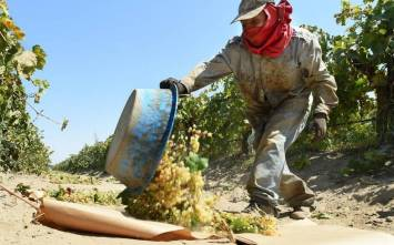jrw-farmworker-1