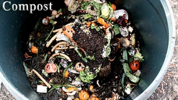 wgtw_compost_lg_text