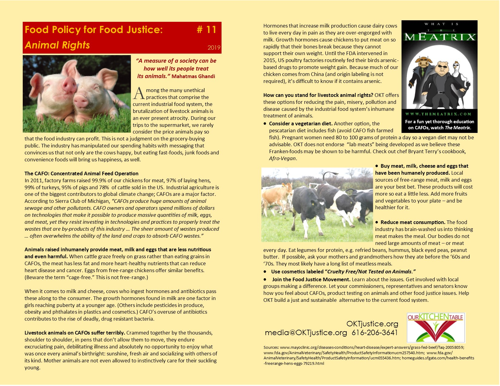 Animal Rights #11 O 19